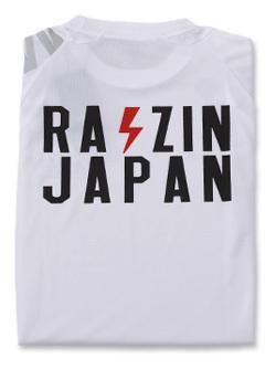 2018 JKF×デサント JAPAN Tシャツ (ホワイト)画像